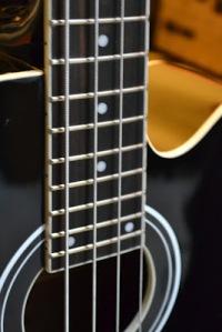 Tanglewood Acoustic Bass Custom JASA CUSTOM GITAR DAN BASS CANA GITAR CUSTOM KAYU IMPORT KANADA (22)