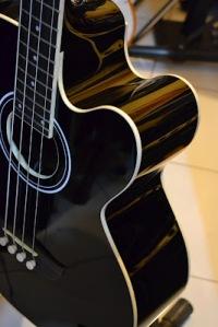 Tanglewood Acoustic Bass Custom JASA CUSTOM GITAR DAN BASS CANA GITAR CUSTOM KAYU IMPORT KANADA (23)
